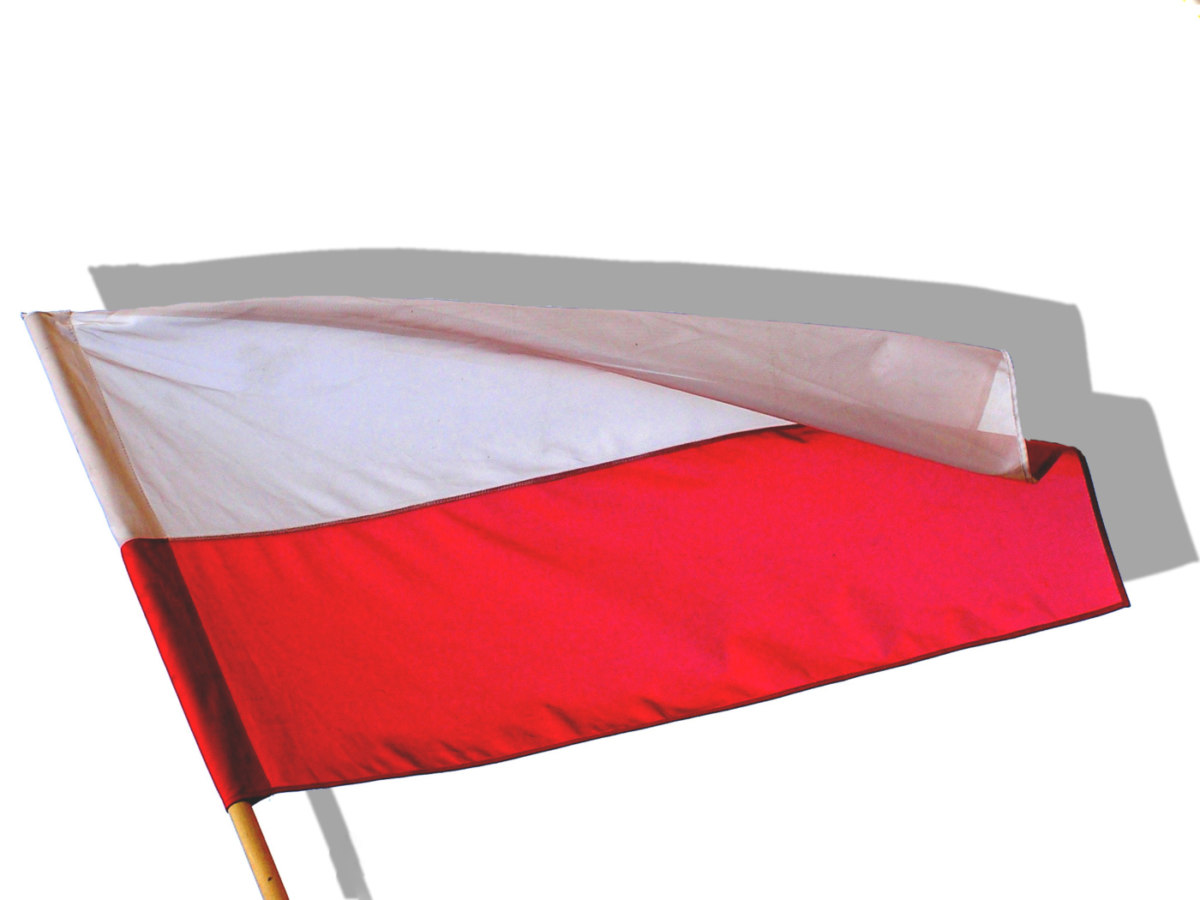 Polish Flag 1197630