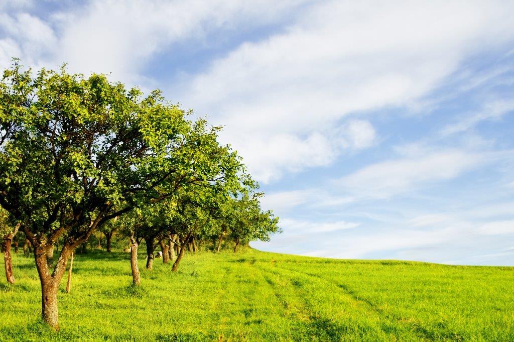 MLEKOVITA Inwestuje W Ochronę środowiska